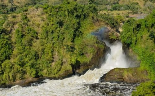 3 Days Murchison Falls safari Uganda - Wild Jungle Trails Safaris